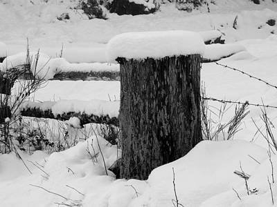Snowy Post Original