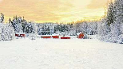 Photograph - Snowy Ranch At Sunset Deux by Marius Sipa