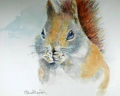 Snowy Red Squirrel Art Print
