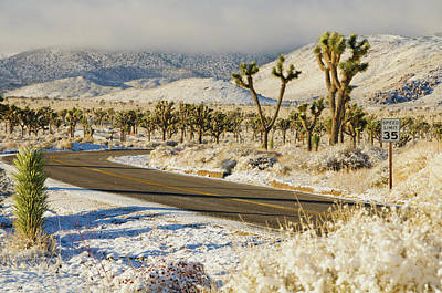 Photograph - Snowy Road In Desert by Connie Cooper-Edwards