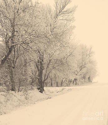 Snowy Roads Photograph - Snowy Road by Julie Lueders
