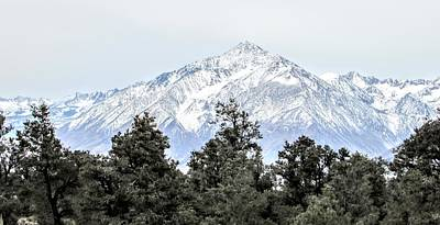 Photograph - Snowy Sierra by Marilyn Diaz