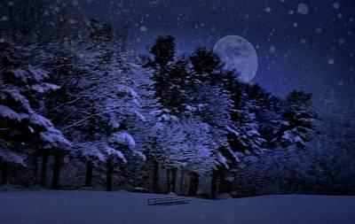 Photograph - Snowy, Snowy Night by Phyllis Meinke