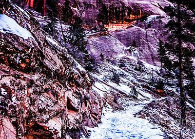 Photograph - Snowy Sojourn by Adam Morsa