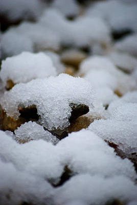 Photograph - Snowy Stones by Lisa Knechtel
