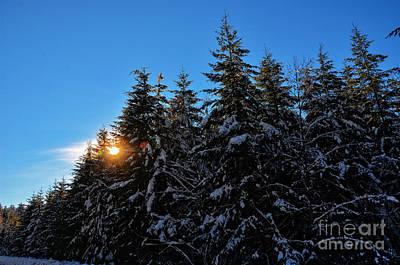 Photograph - Snowy Sunset by Frank Larkin