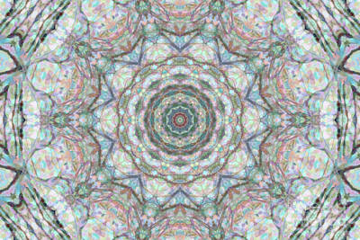 Photograph - Snowy Tree Kaleidoscope by Donna L Munro