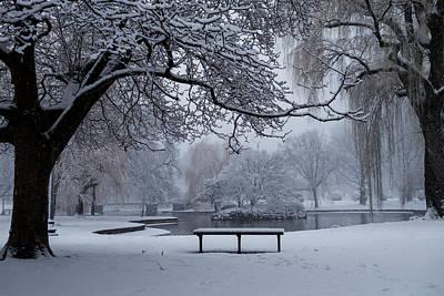 Snowy Tree The Public Garden Boston Ma Bench Art Print