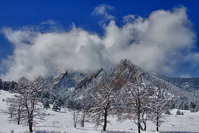 Photograph - Snowy Trees And The Flatirons Boulder Colorado by James BO Insogna