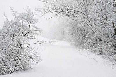 Elmira Ny Photograph - Winter In Upstate New York by Debbie Fieno