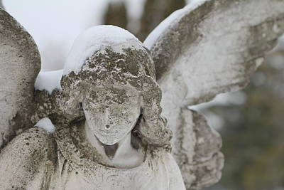 Mixed Media - Snowy Wings  by Cynthia Conte