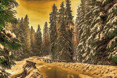 Photograph - Snowy Winter Evening by Ericamaxine Price
