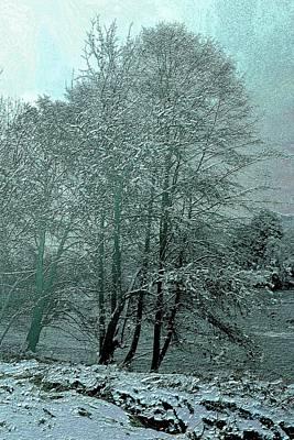 Photograph - Snowy Winter In Roseburg, Oregon by Michele Avanti