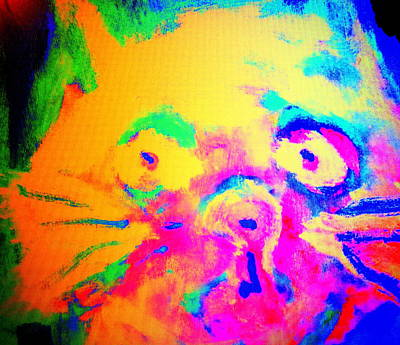 Come Look At My Amazing Cat, She Is So Colorful And Fat    Art Print