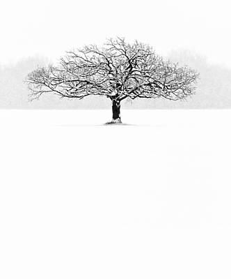 Winter Photograph - So Alone, A Perfect Reflection Of My Empty Soul by Matt Anderson