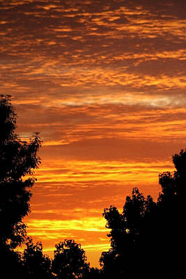 So. Cal Wall Art - Photograph - So Cal Sunset by Chris Brannen