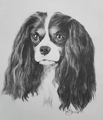 Drawing - So Cavalier by Rachel Hames