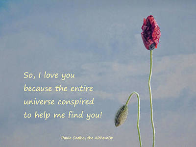Photograph - So I Love You Quote by Barbara St Jean