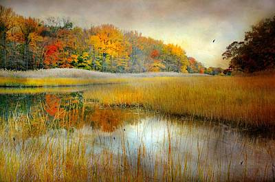 Connecticut Landscape Photograph - So Long by Diana Angstadt
