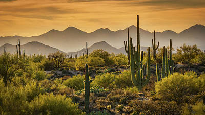 Photograph - So Many Layers To The Sonoran  by Saija Lehtonen