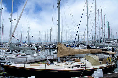 Sausalito Photograph - So Many Sailboats by Laura DAddona
