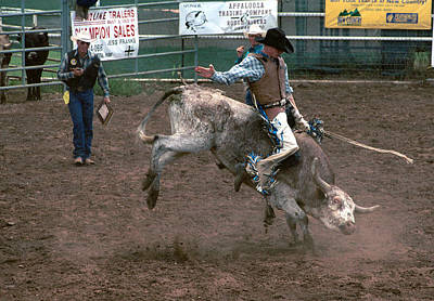 Bull Riding Photograph - So Much Bull by Jerry McElroy