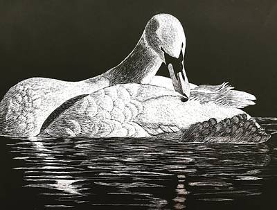 Mixed Media - So Solo Swan by Brenda Brown