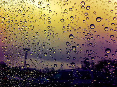 Photograph - Soaked.. by Deepti Bhatia
