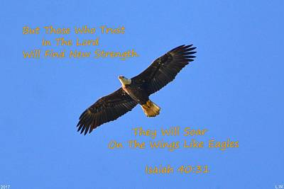 Photograph - Soar On The Wings Like Eagles Isaiah 40 31  by Lisa Wooten