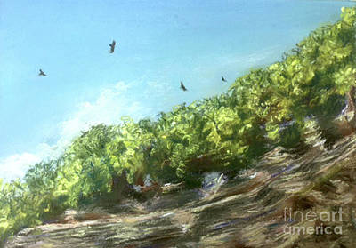 Painting - Soaring Above The North Rim by Susan Sarabasha