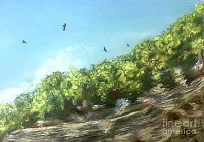 Water Droplets Sharon Johnstone - Soaring Above the North Rim by Susan Sarabasha