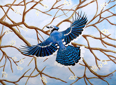 Soaring Blue Jay  Art Print by Teresa Wing