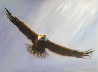 Soaring Eagle Art Print by Greg Neal