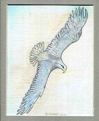 Painting - Soaring Eagle by Joe Hagarty