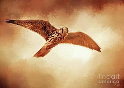 Soaring Mixed Media - Soaring Falcon by KaFra Art