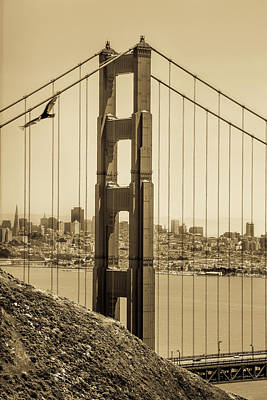 Photograph - Soaring Over The Golden Gate by Constance Reid