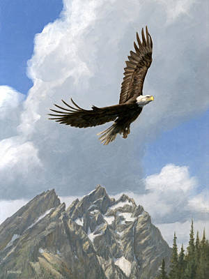 Painting - Soaring by Peter Eades