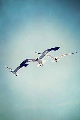 Art Print featuring the photograph Soaring Seagulls by Trish Mistric