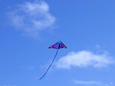 Kite Photograph - Soaring by Will Borden
