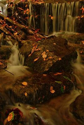Photograph - Soco Falls In Autumn by Dan Sproul