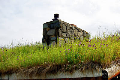 Photograph - Sod Roof by David Arment