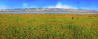 Photograph - Soda Lake Panorama by Lynn Bauer