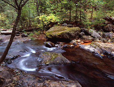 Jim Nelson Photograph - Soda Spring Little Butte Creek by Jim Nelson