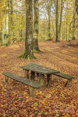 Photograph - Soderasens Picnic Bench by Antony McAulay