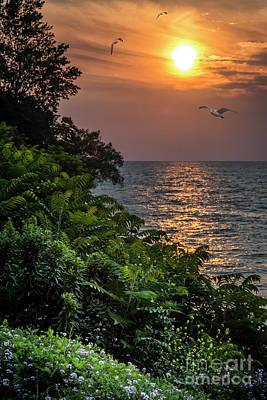 Photograph - Sodus Sunset by Joann Long