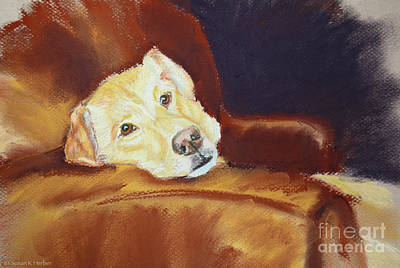 Pastel - Sofa Surfer by Susan Herber