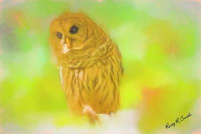 Digital Art - Soft Art Barred Owl. by Rusty R Smith