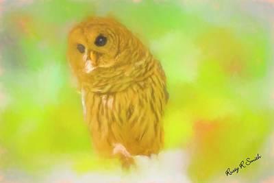 Digital Art - Soft Art Barred Owl. by Rusty R Smith