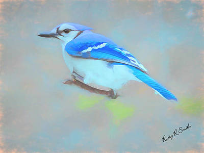 Digital Art - Soft Bluejay Portrait by Rusty R Smith
