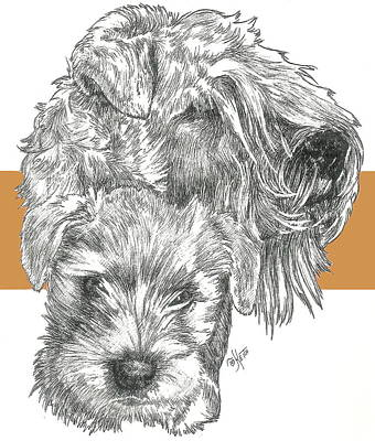 Mixed Media - Soft Coated Wheaten Terrier And Pup by Barbara Keith